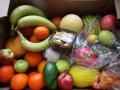 Ochutnávka exotického ovoce